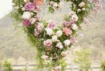 Garden | Romance