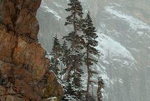 Define: Colorado / by Ashleigh Holmes