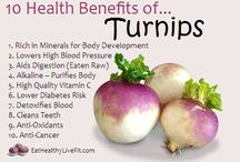 Turnips / Health benefits of turnips and some recipes to help you navigate your way through your CSA delivery this month!