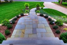 Landscaping  / Pool landscaping
