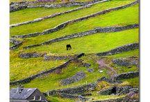 Ireland - Eire - Erin / is tu mo ghria / by Adri Marais
