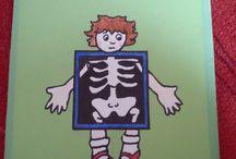 Lapbook - lidské tělo