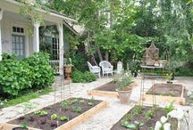 Gardens, Porches, and Outdoor Living / by Christie Richardson