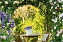 Garden / by Angie Shackelford
