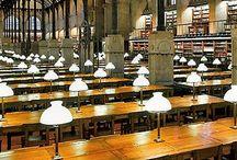 libraries - kingdom of books