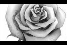 ур.рис.роза
