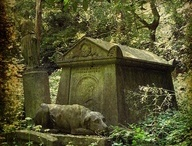 Headstones / by Kay Holsted