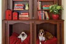 Casas de cachorro