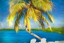 Digital paintings / Painterly photographic illustrations