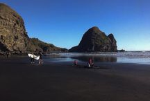 Images of Piha / Piha - my soul sanctuary