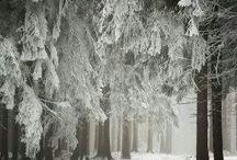Winter♡♡♡