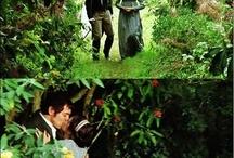 Austen my land