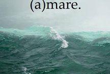 A...mare
