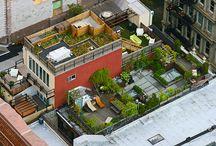 Záhrada_strecha