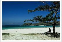 Indonesia Tour Operator / Plan Your Trip to Indonesia