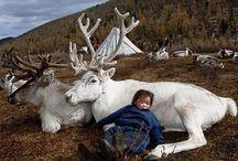 Copiii Terrei . Via  Xue Di