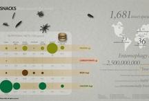 Infographics (Food and Drinks)
