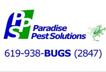 Paradise Pest Solutions / your choice for pest control in San Diego