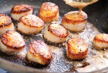 Scallops in the kitchen