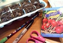 gardening / by Kit Powers