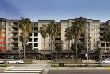 Santa Monica apartments for rent / The best apartments to rent in Santa Monica, CA!