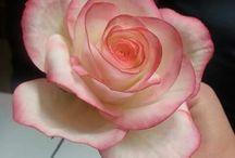 gülleri çok seviyorum