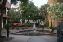 Charleston,SC
