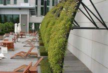 Zahrada (landscaping - terén.úprava)