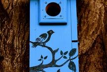Birdhouses / by Ilene Goldman
