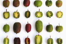 Actinidia - Kiwi - Kiwai / Une liane, des feuilles, des fleurs, des fruits, des recettes...