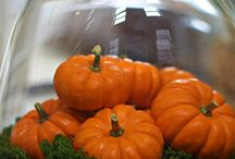 Creative Fall Decor Sweeps / by Craftbaby
