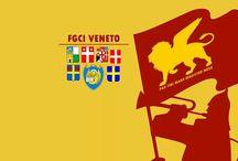 La FGCI e i Social