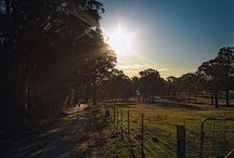 Wedding - Country Farm Rural