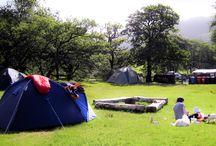 Camping mood board