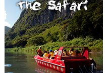 Discover - Fiji / Where we stay, what we do and what our travellers liked