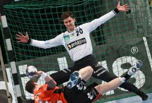 Handball goalkeeper Landin
