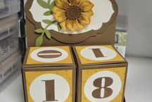 Cards...3-D Gift Box Punch Board / by Doris Amey-Ketcham