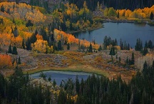 Play Outside in Park City, UT! Vacation Rentals, Outdoor Activities / Plan a Park City vacation and gear up for adventure! If you're an outdoor enthusiast, a Park City vacation rental might just be your perfect paradise! Dozens of beautiful state parks dot the landscape in Utah, and Wasatch Mountain State Park is one of the most beautiful parks you'll see. There's tons to see and do in Park City, and find vacation homes, activities, events, food and attractions in Utah! https://www.itrip.net/destinations/ut#Park-City