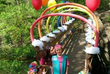 Girl Scout Bridging