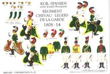 KINGDOM OF JOSEPH NAPOLEON SPAIN ARMY