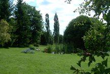 Finnish Gardens