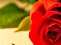 Love - hearts ❤ / Szerelem- szívek ❤