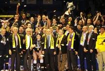 FENERBAHÇE Universal (European Champions League Champions 2012)