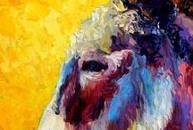 Art- Donkey