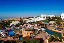 Luxury Hotels / Some of the most Luxurious five-star resorts, carefully selected for our customers.