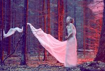 Fairy Tales Art and Photography