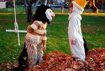 Costumes / by Jessica Osborn