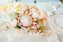 Wedding Day Flower / Dream Flowers