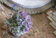 Poppenhuizen bloemen project