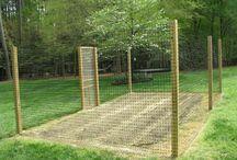 Garden /outdoors